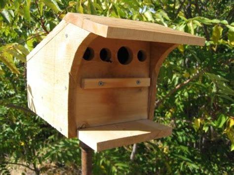kinney swallow nest box bird houses nesting boxes bird house kits