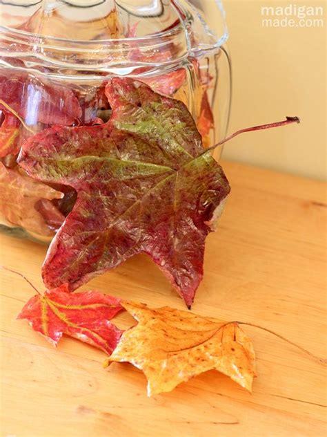 preserve fall leaves  decoupage