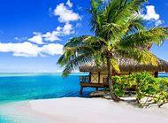 Tropical Summer Beaches