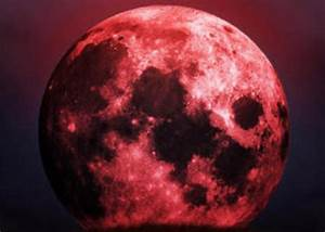Are the Blood Moons indicating the end of the world ...