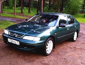 1998 Nissan Primera  P11   U2013 Pictures  Information And