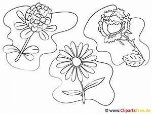 Bilder, Zum, Malen, Und, Ausdrucken, Blumen