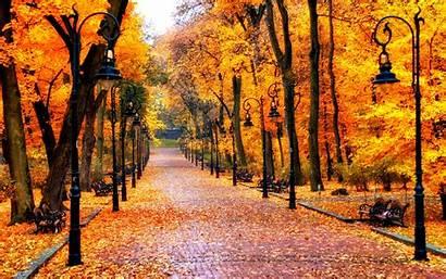 Autumn Fanpop