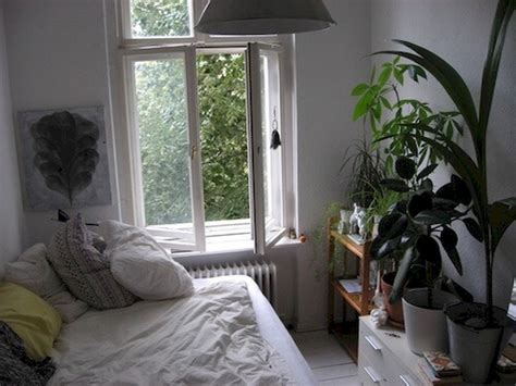 Aesthetic Plant White Bedroom