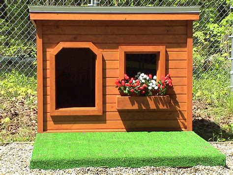 dog house wallpaper gallery