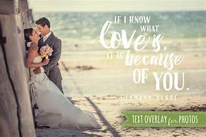 love soul quote word overlay love wedding phrase photo With wedding photography quotes