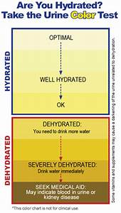 Urine Color and Dehydration Continued