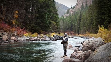 gallatin river    places  fly fish  montana