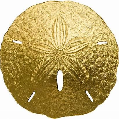 Sand Dollar Gold Palau Coin 24k Gram