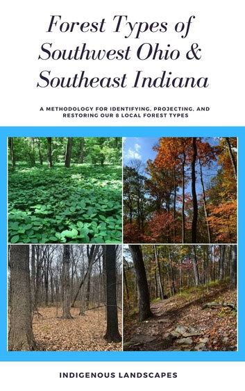 Forest Types of Southwest Ohio and Southeast Indiana eBook