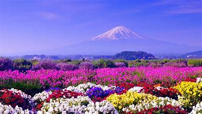 Spring Season Wallpapers Nice Landscapes
