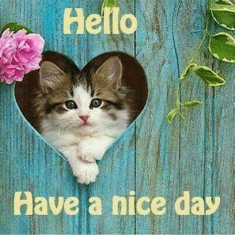 Have A Great Day Meme - ello have a nice day meme on sizzle