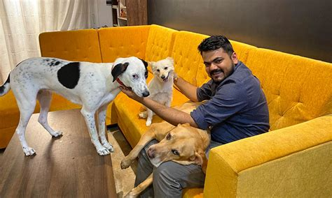 Efficient and quick claims handling. MoneyTap Partners with Pawtect to Offer Pet Insurance of up to INR 1.5 lacs - CXO Outlook