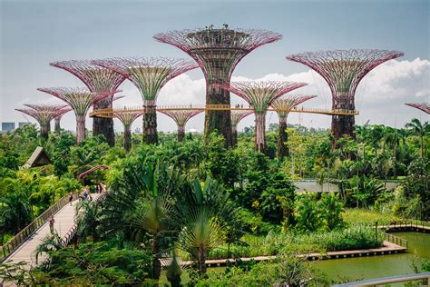 Botanischer Garten Singapur singapur stefan schramm fotografie