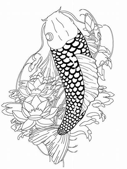 Koi Coloring Fish Pages Japanese Adult Adults