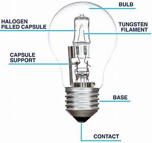 Best Led Bulbs