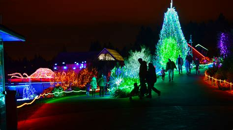 point defiance zoo lights tacoma washington explored