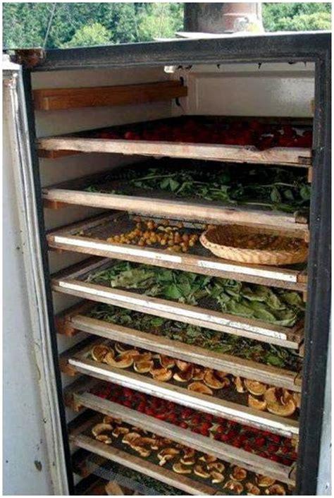 Как сделать сушилку для фруктов овощей грибов мяса и рыбы своими руками ТехноЭксперт