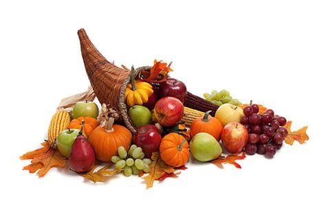 Top 60 Cornucopia Stock Photos, Pictures, And Images Istock