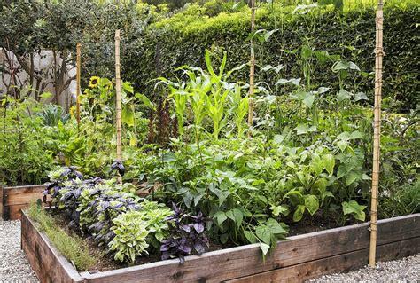 Permakultur Garten So Gestalten Sie Obst Und Gemüsegarten