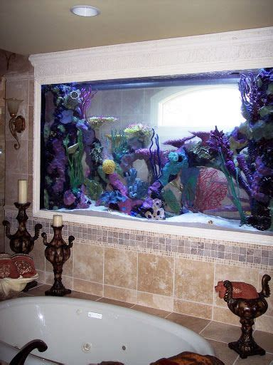 Fish Tanks Aquariums