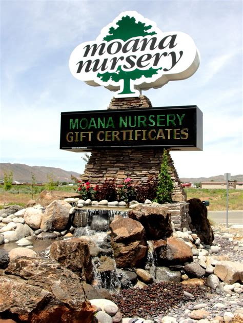 moana nursery in sparks nv 775 425 4