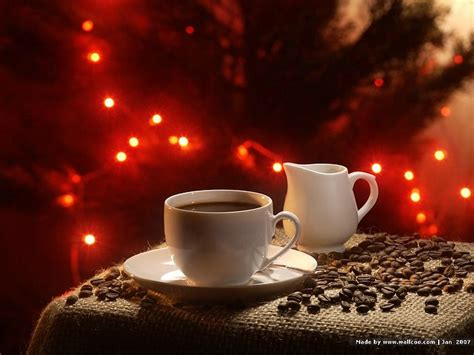 Coffee With Christmas Light 8 Best Coffee Maker 2018 Youtube Moka Pot Cake Recipe With In It On The Market 2017 Vending Machine Japan Reviews Makers Espresso