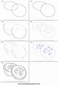 How to Draw Kiwi Fruit printable step by step drawing ...