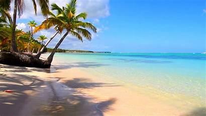 Margaritaville Jimmy Buffett Thomas St Backgrounds Beach