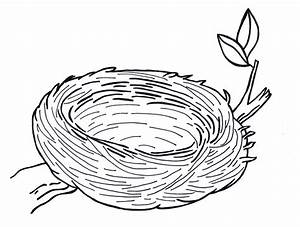 Nest clipart black and white - Pencil and in color nest ...