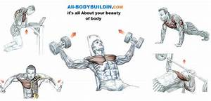 Best Chest Workouts - Top 5 Proven Workouts
