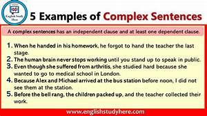5 Examples Of Complex Sentences