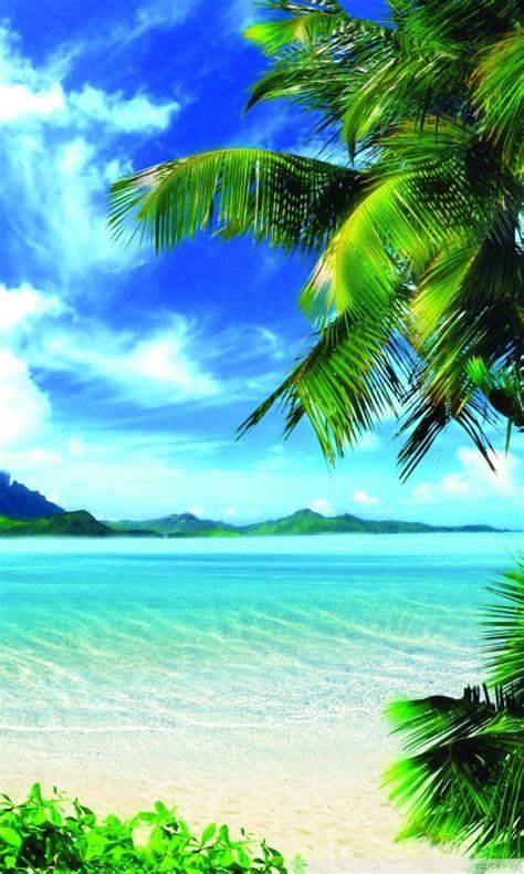 summer vacation  hd desktop wallpaper   ultra hd tv