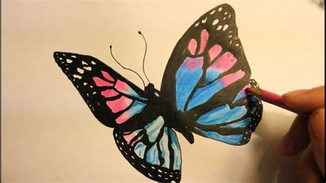 How To Draw A Butterfly easy step By Step wings with