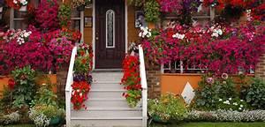 Cheshire gardening hacks