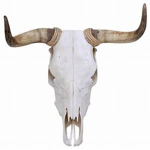 bull skull - Google Search bull mascot Pinterest