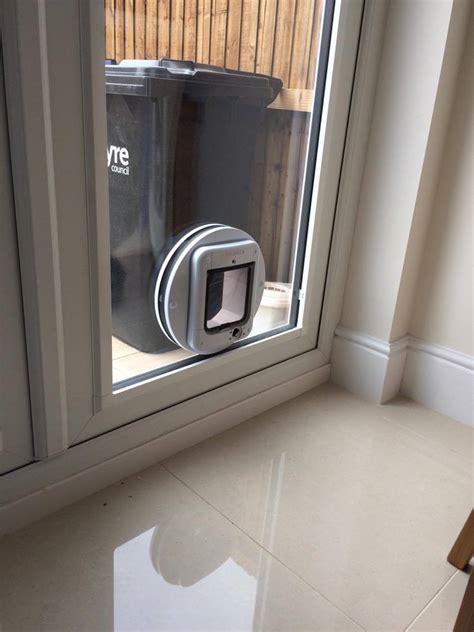 cat flap in patio door gallery window repair solutions
