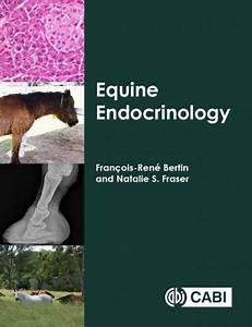 Equine Endocrinology Pdf