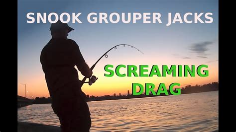 catching grouper snook bait artificial lures fishing