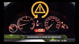 Problema Con Filtro De Part U00cdculas Peugeot 407  308  607  208     No Regenera