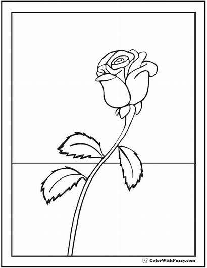 Rose Coloring Single Printable Pdf Printables