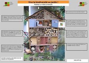 Abri à Insectes : un h tel insectes arcueil arcueil ~ Premium-room.com Idées de Décoration