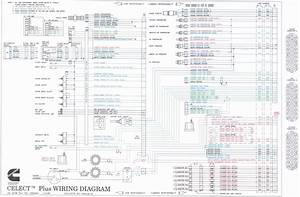 Cummins M11 Celect Plus Wiring Diagram Beautiful N14
