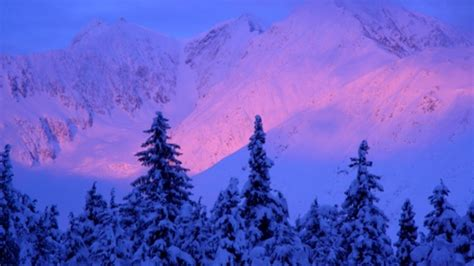 alaska travel packages northern lights 6 day northern lights overnight getaway package