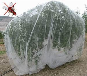 Protection Arbres Fruitiers : filet arbre ~ Premium-room.com Idées de Décoration