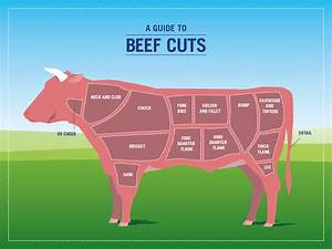 Picture Of Cow With Different Cuts Of Meat