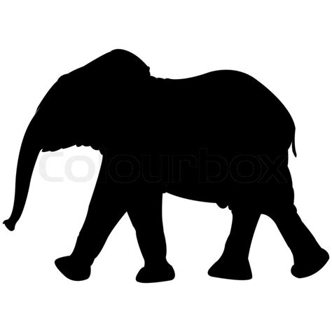 elephant silhouette front baby elephant silhouette isolated on white background