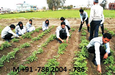 bsc hons agriculture eligibility criteria syllabus