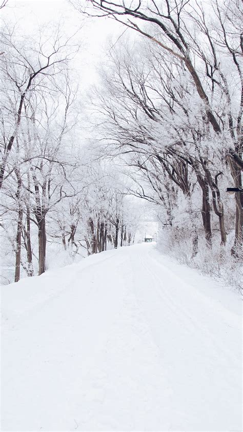 750x1334 beautiful snow green nature papers co iphone wallpaper mp49 winter road