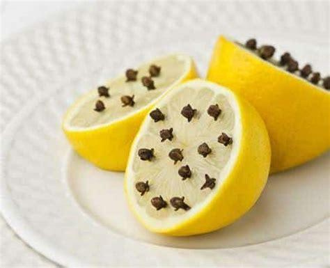 r 233 pulsif naturel contre les mouches et les moustiques avec seulement un citron et des clous de